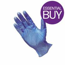 Blue Vinyl Powder Free Glove Large (x100)